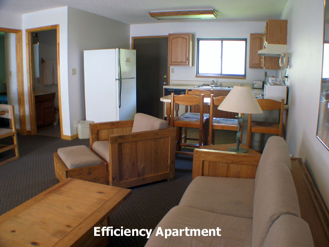 Efficiency apartment 2105 my blog for What s an efficiency apartment